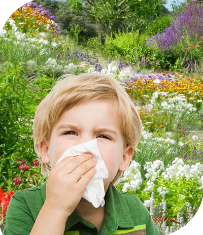 Allergy Symptoms & Treatment in The Woodlands, Texas